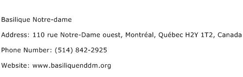 Basilique Notre dame Address Contact Number