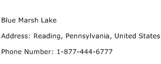 Blue Marsh Lake Address Contact Number