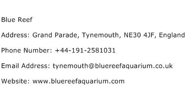 Blue Reef Address Contact Number