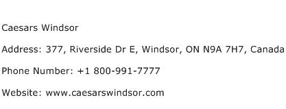 Caesars Windsor Contact