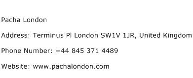 Pacha London Address Contact Number